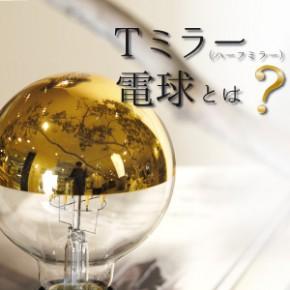 Tミラー(ハーフミラー)電球とは?_sm